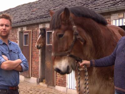 Ben Roelants herontdekt het plattelandsleven in B&B Kasteelhoeve De Tornaco