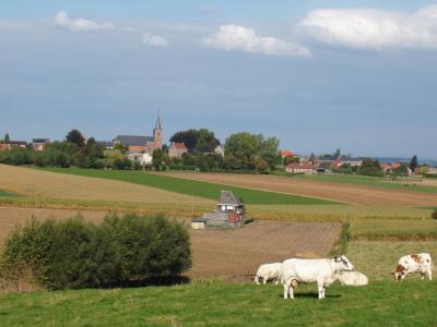 Op stap in de Vlaamse Ardennen