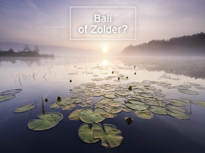 Bali of Zolder?
