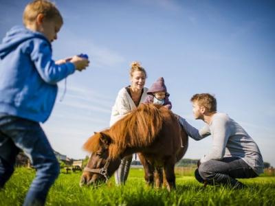 Logies voor paard en ruiter