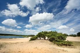 Saharawandeling Bosland