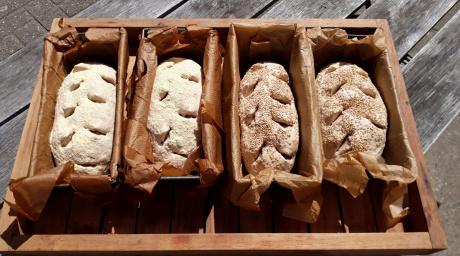 Workshop broodbakken