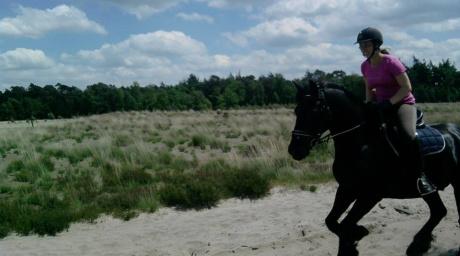 Paardrijden in de natuur