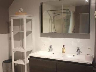 hofvaneden-wingene-badkamer.jpg