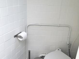 a_bg toilet.JPG