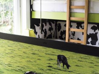 DSC01070 chambre vaches_2.jpg