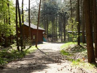boshuisje 1 buiten 02_2.jpg