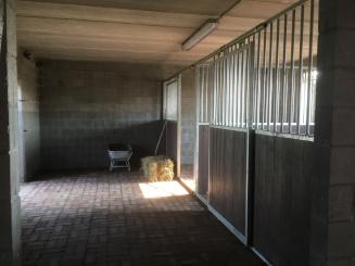 vakantiewoning Pelterheggen het bedje voor de paarden.JPG