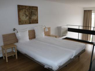 Duplex Standard Apartment 3 - Copy.JPG
