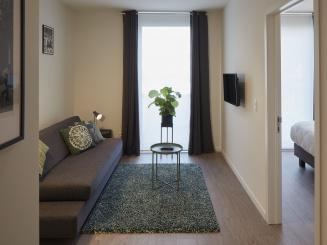 appartement 2 salon.jpg