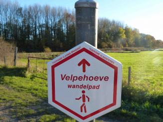 VELPE55 vakantiewoning Hageland wandelen.jpg