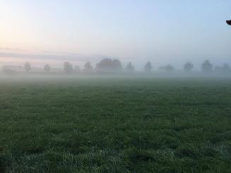 zicht op de velden.jpg