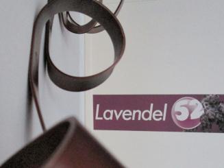 LIV-04.jpg