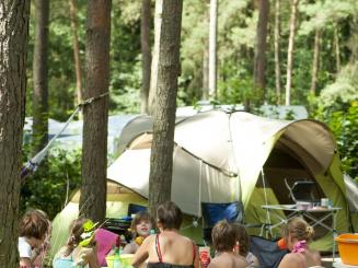 Familiecamping De Lilse Bergen.jpg