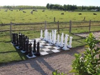 A schaakbord+ koe web.JPG