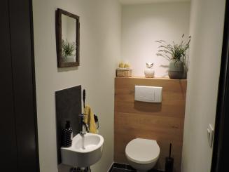 toilet beneden.JPG