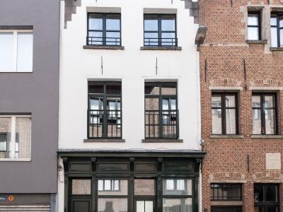 vakantiewoning Zalig in Antwerpen 77