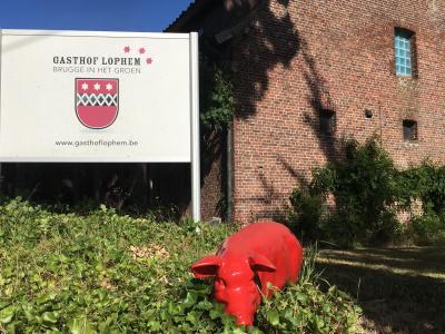 Gasthof Lophem-vakantiewoning 1