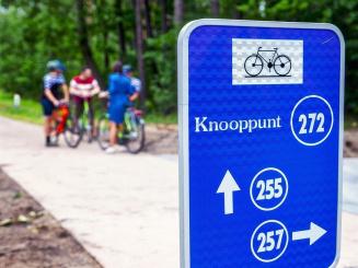 nr fietsroute door bomen.jpg