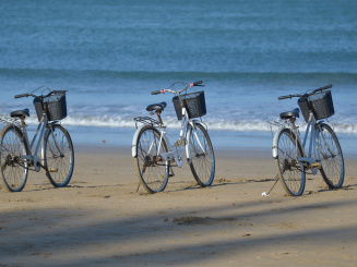 bicycle-rental-1028952.jpg