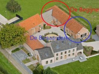 Bogaerden-Begijnen_0.jpeg