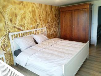 De Calonne vakantiewoning Veurne - vakantiehuis - hoeve (19).jpg