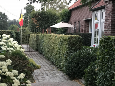Appartement bij B&B 't Welthof