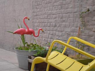 13a detail terras met flamingos.jpg