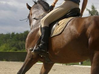 paardrijden-kleur.jpg