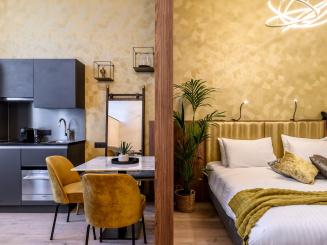 Overview Deluxe Studio and Kitchenette in Leopold Hotel Oudenaarde.jpg