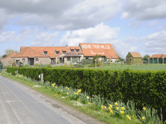 Hove Ter Hille