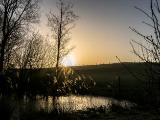 20180304 - 2018-03-04 - Weekendje Heuvelland - 68_0.jpg