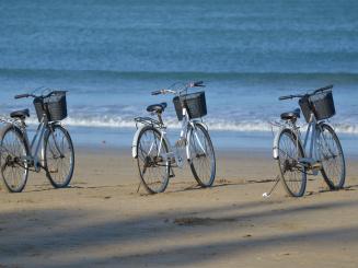 bicycle-rental-1028952.jpg