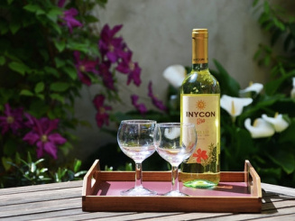 wijnterras.jpg